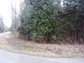 Picture of Point Roberts Parcel Number 405302-538242