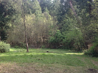 Picture of Point Roberts Parcel Number 405312-124409