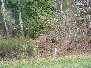 Picture of Point Roberts Parcel Number 415335-063149