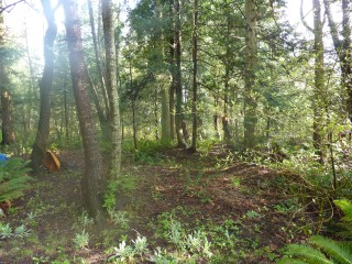 Picture of Point Roberts Parcel Number 405301-095229