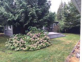 Picture of Point Roberts Parcel Number 405302-239203