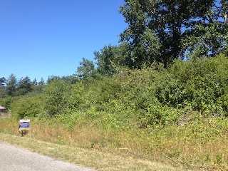 Picture of Point Roberts Parcel Number 405310-547442