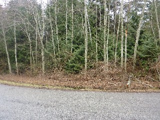 Picture of Point Roberts Parcel Number 405302-506160