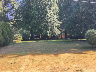 Picture of Point Roberts Parcel Number 405303-541451
