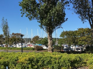 Picture of Point Roberts Parcel Number 405310-313365
