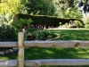 garden 1 x