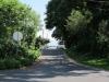 street (web)