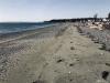 beach2-web