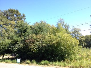 Picture of Point Roberts Parcel Number 415335-354189