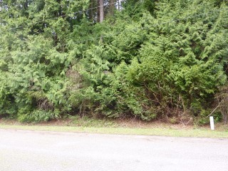 Picture of Point Roberts Parcel Number 415335-114030