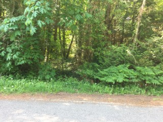 Picture of Point Roberts Parcel Number 415335-045123