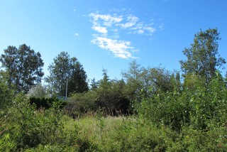 Picture of Point Roberts Parcel Number 405311-018455