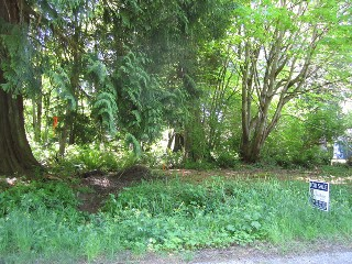 Picture of Point Roberts Parcel Number 405302-238169