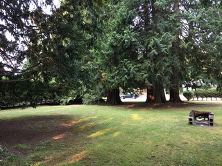 Picture of Point Roberts Parcel Number 405303-541446