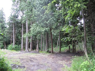 Picture of Point Roberts Parcel Number 405301-050186