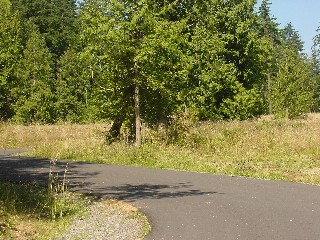 Picture of Point Roberts Parcel Number 405302-483334