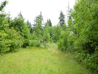 Picture of Point Roberts Parcel Number 415335-117093