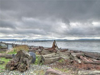 Picture of Point Roberts Parcel Number 405309-487394